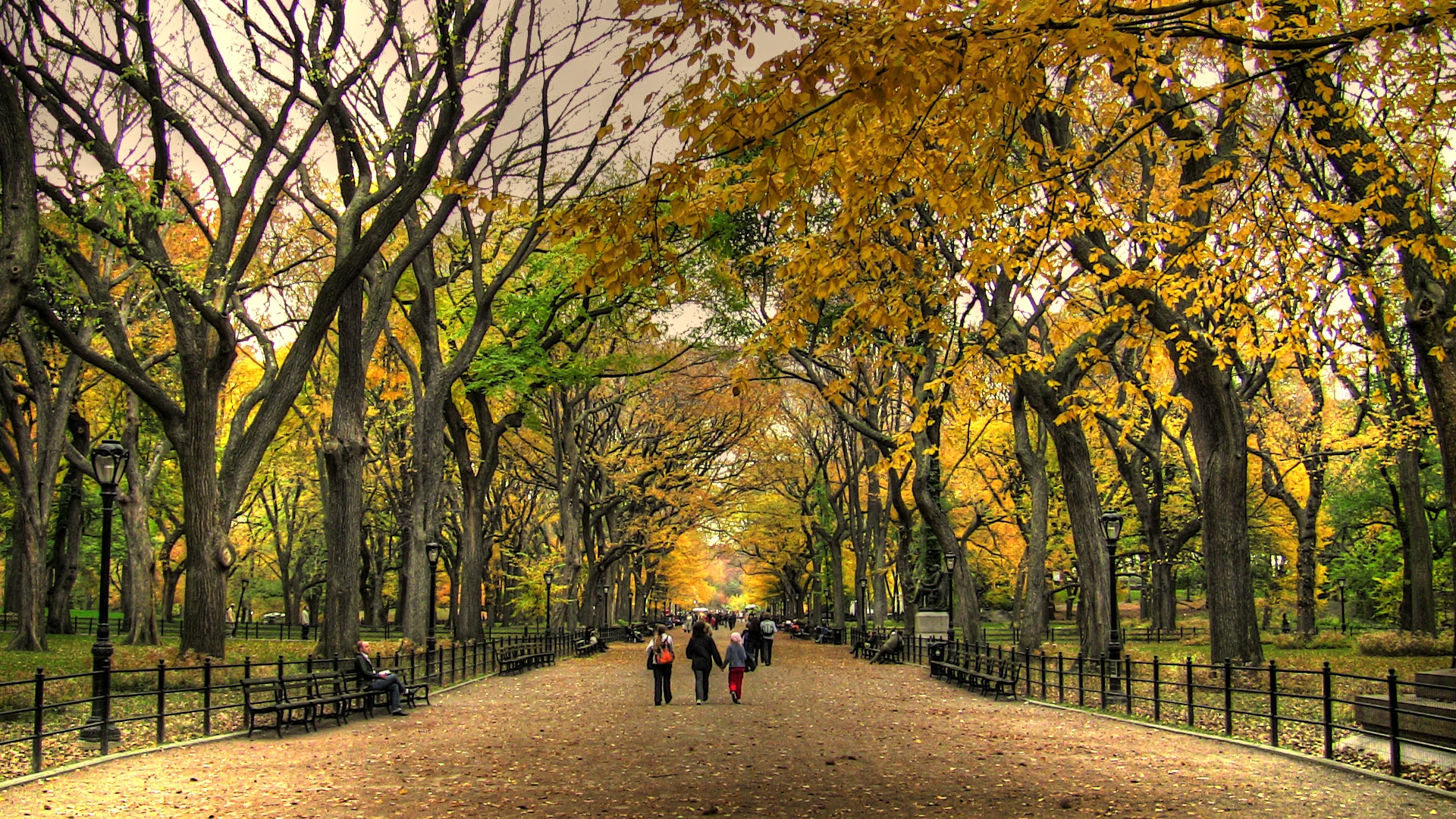 autumn background playlist park central fall1 1920x1080