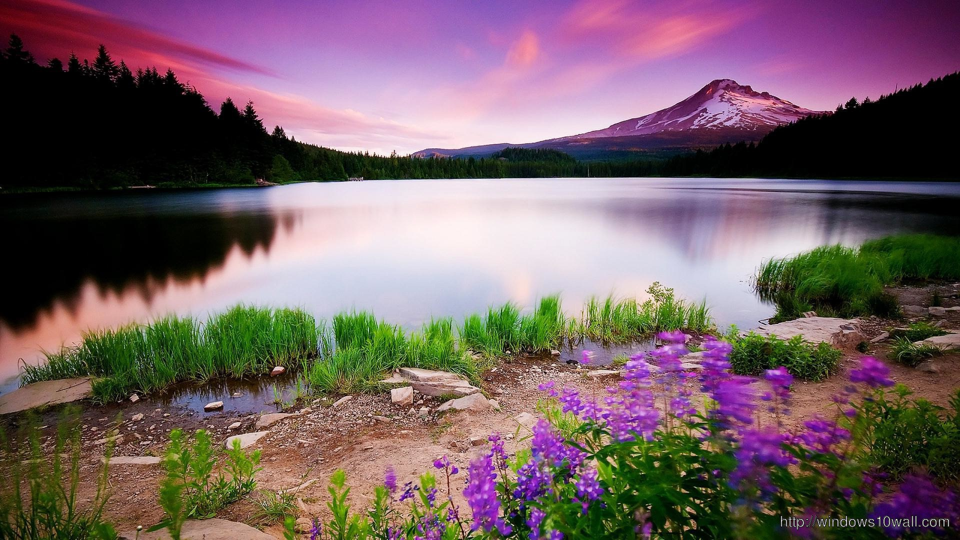 Colorful Nature Hd Wallpaper windows 10 Wallpapers 1920x1080