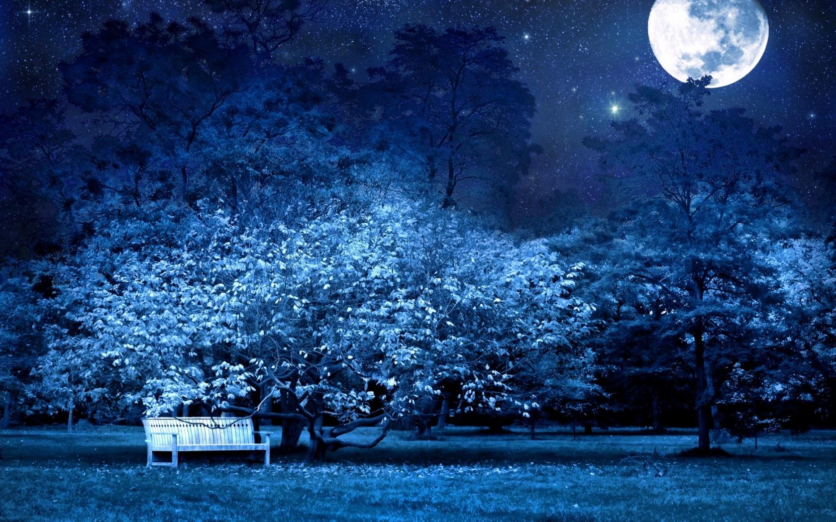 beautiful night wallpaper hd 100 Freetopwallpapercom 1680x1050
