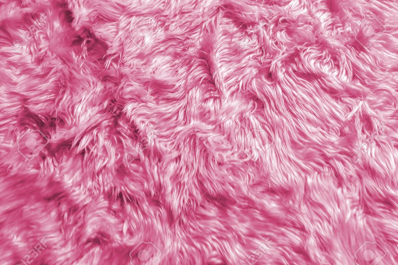 Wool Backgrounds Texture Closeup Of Natural Soft Pink Animal 1300x867
