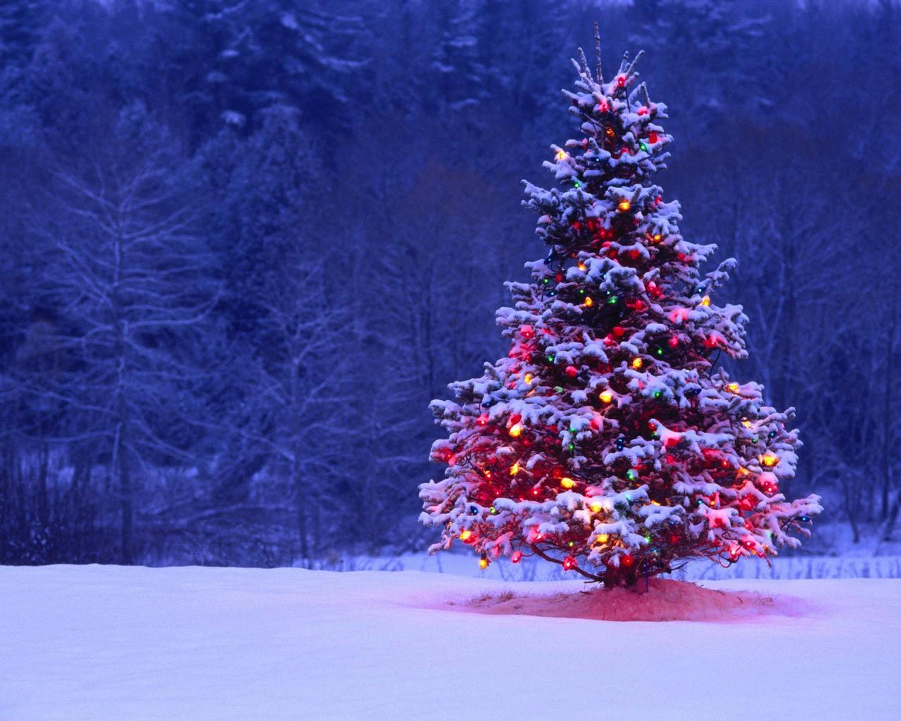 desktop wallpaper winter christmas   wwwwallpapers in hdcom 1280x1024