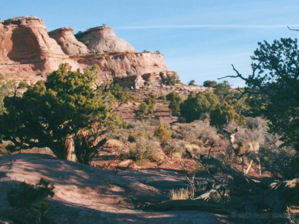 Canyonlands National Park Utah Wallpaper and Web Art Photographs 1025x768