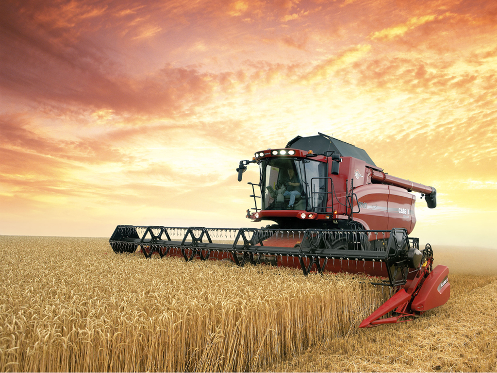 trucks wheat farming HD Wallpaper   General 321201 1024x768