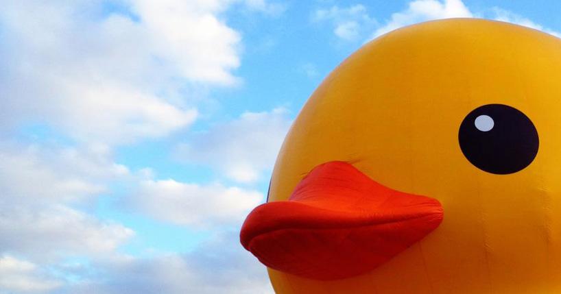 Giant Rubber Duck Wallpaper 818x429