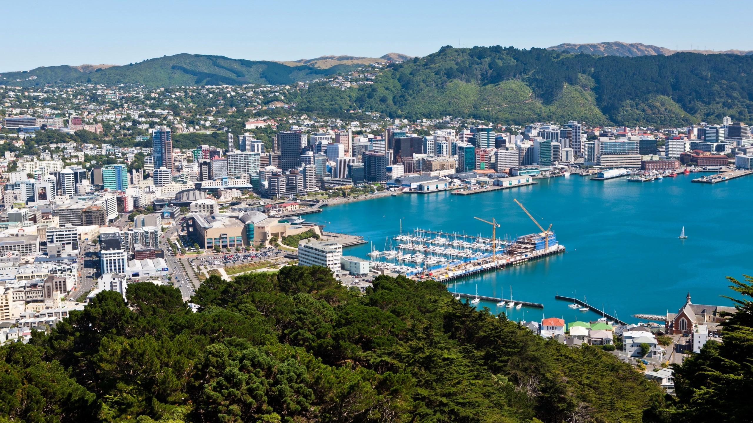 Download 2560x1440 Cityscape New Zealand Wellington Coast 2560x1440