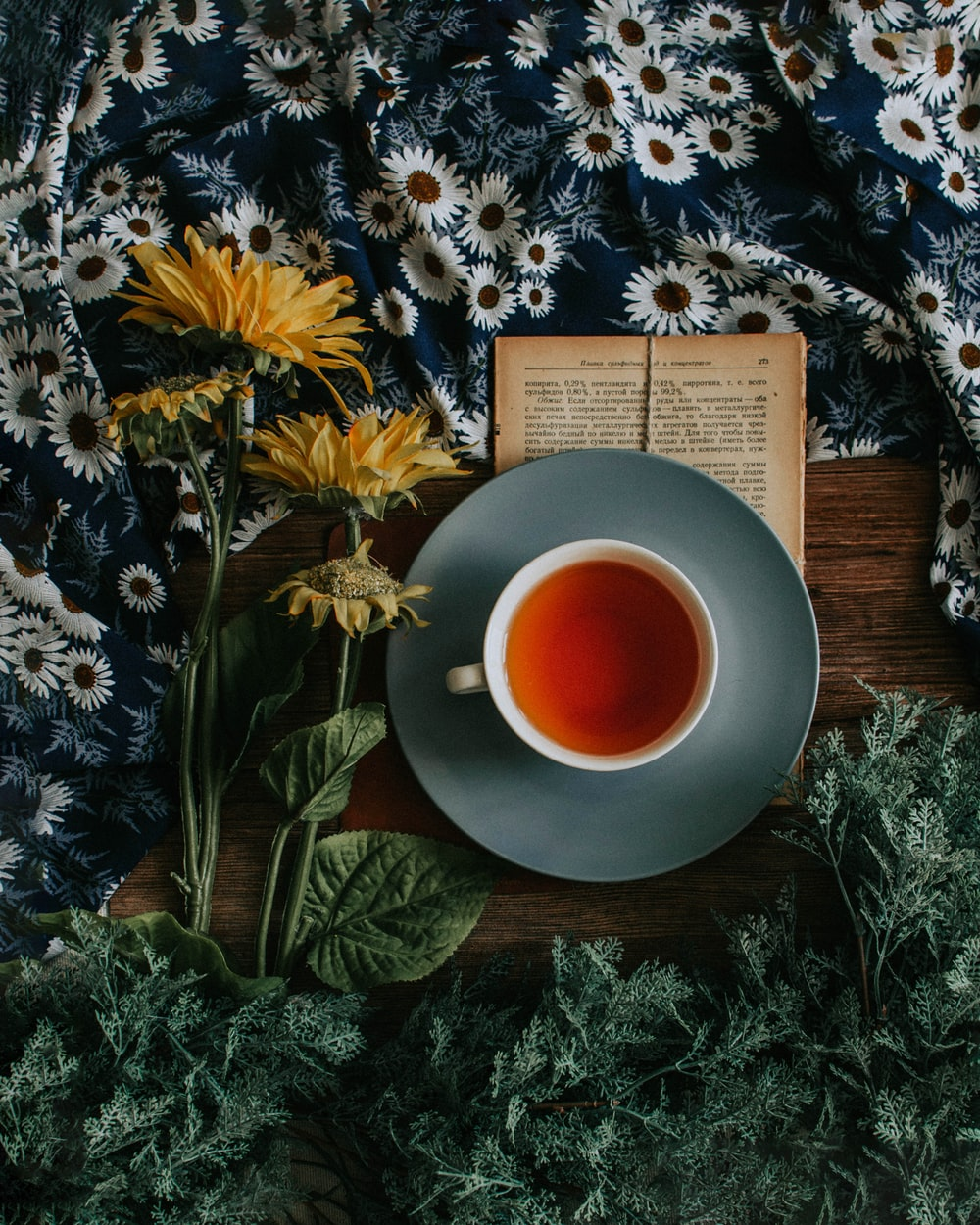 Tea Pictures [HD] Download Images on Unsplash 1000x1250