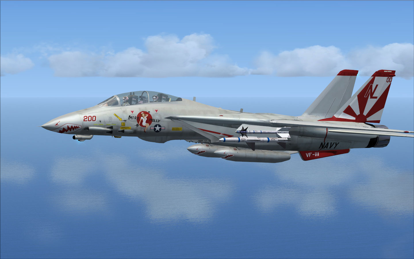 Tomcat Fsx Burn F 22 F22 Military Sky Hd Wallpapers On Pinterest 1440x900