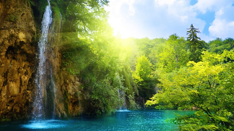 Nature Wallpapers 1080p Best HD Desktop Wallpapers Widescreen 800x450