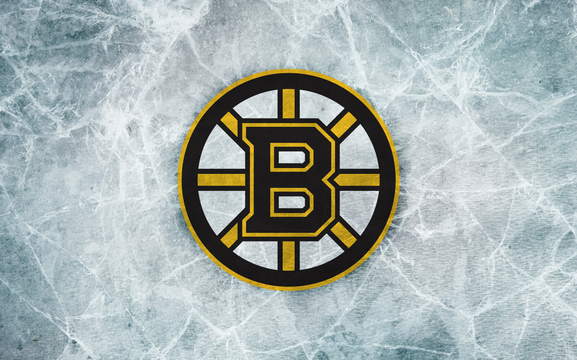 Boston Bruins wallpapers Boston Bruins background   Page 4 1920x1200