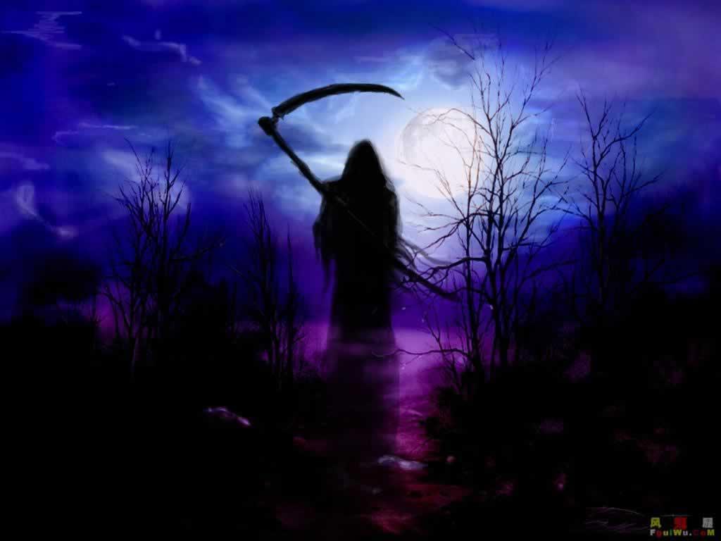 beedznest blog Knock Knock Mr Reaper 1024x768