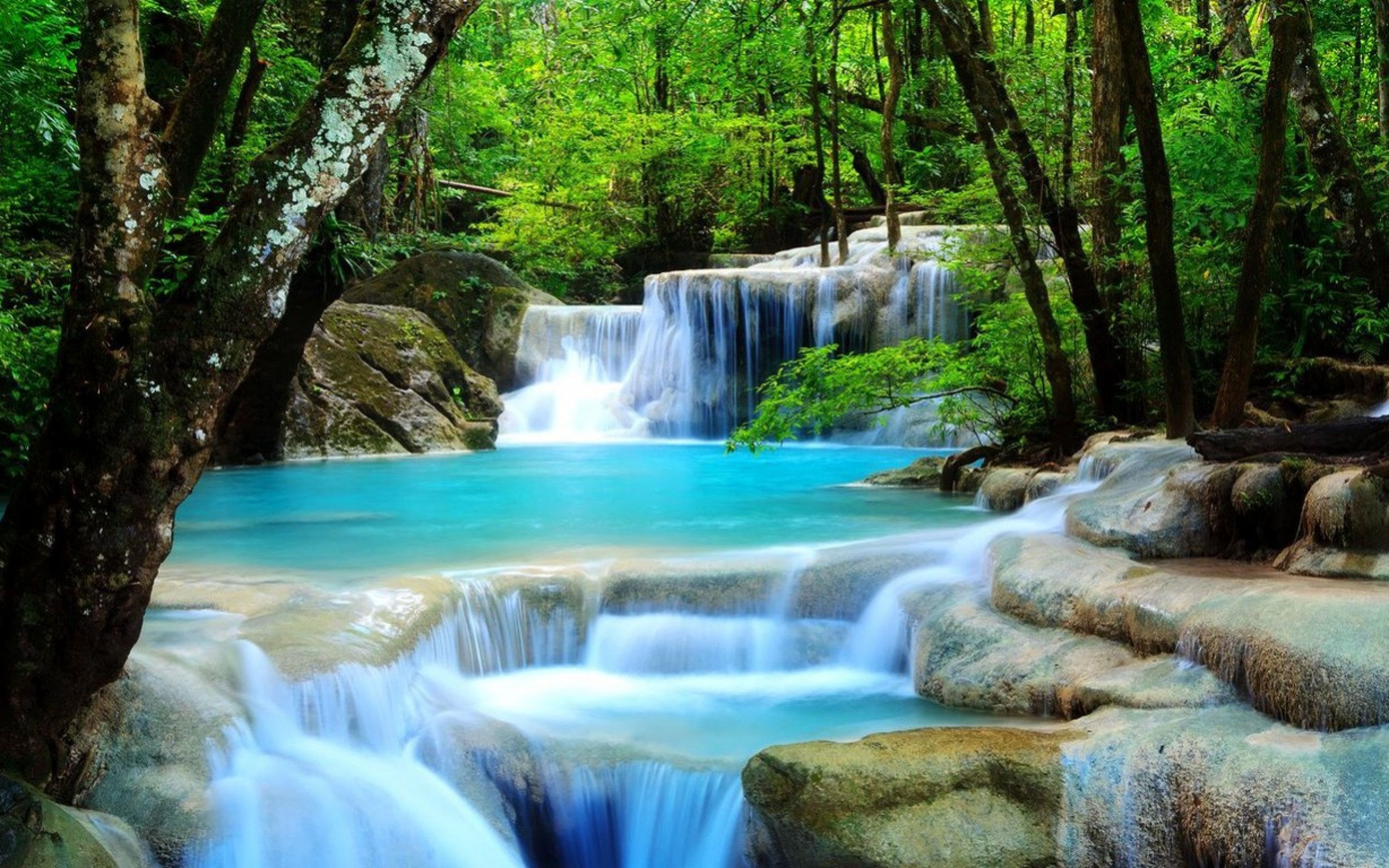download 3d waterfall live wallpaper which is under the waterfall 2560x1600