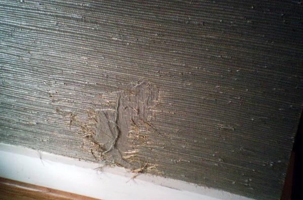 The Wallpaper Lady   Houston TX   Wallpaper Repair 599x396