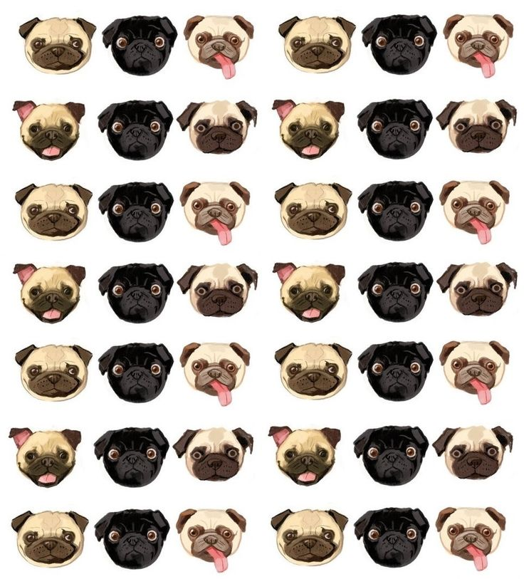 Use This Photo To Make A Cute Pug Pattern Background For Your Twitter 736x813