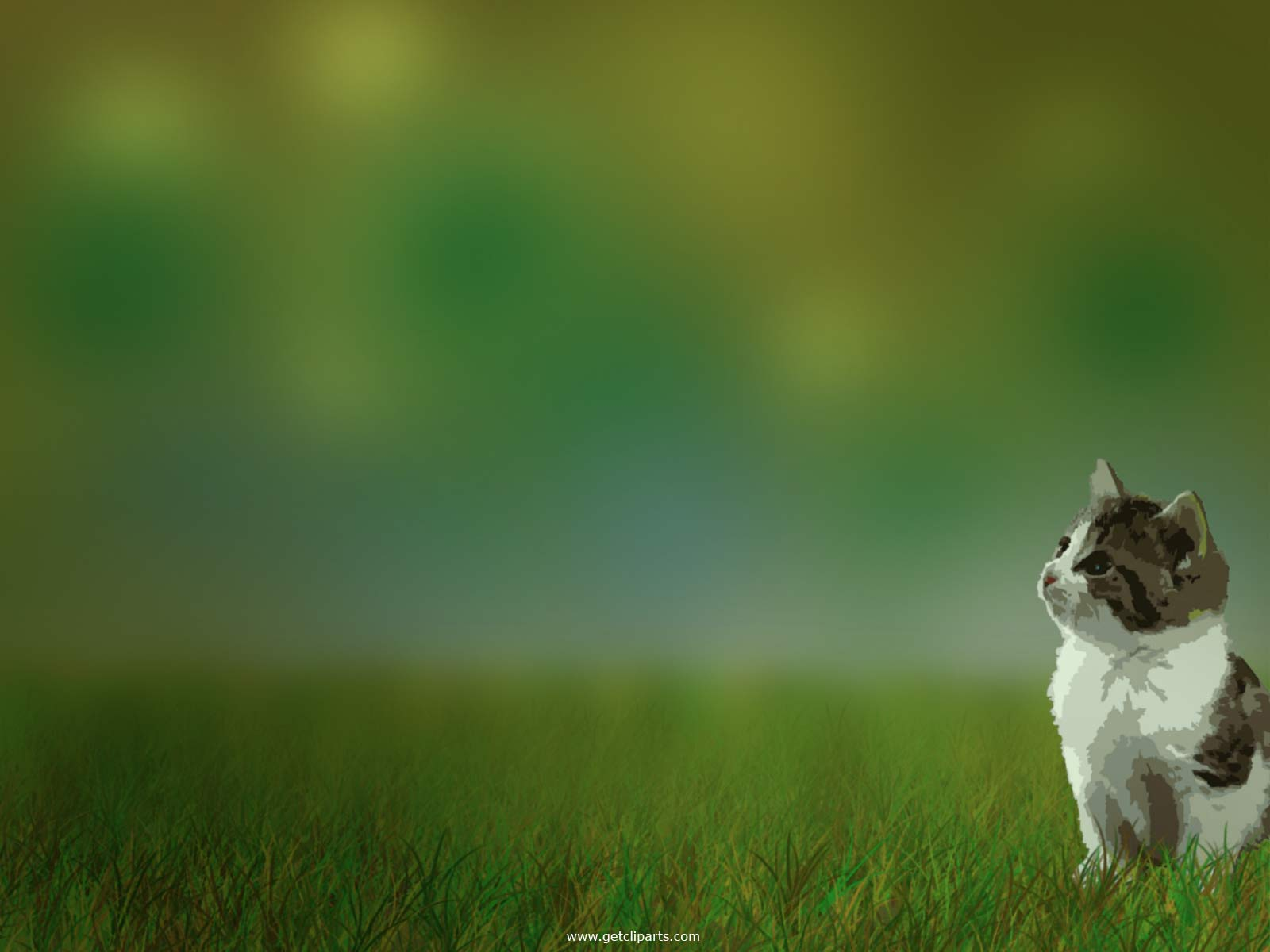hdFunny cat wallpaper desktopFunny cat wallpaperFunny animals 1600x1200