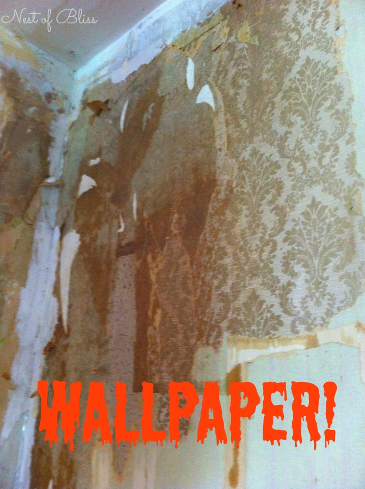 DIY   How To Remove Wallpaper   Nest of Bliss 717x960