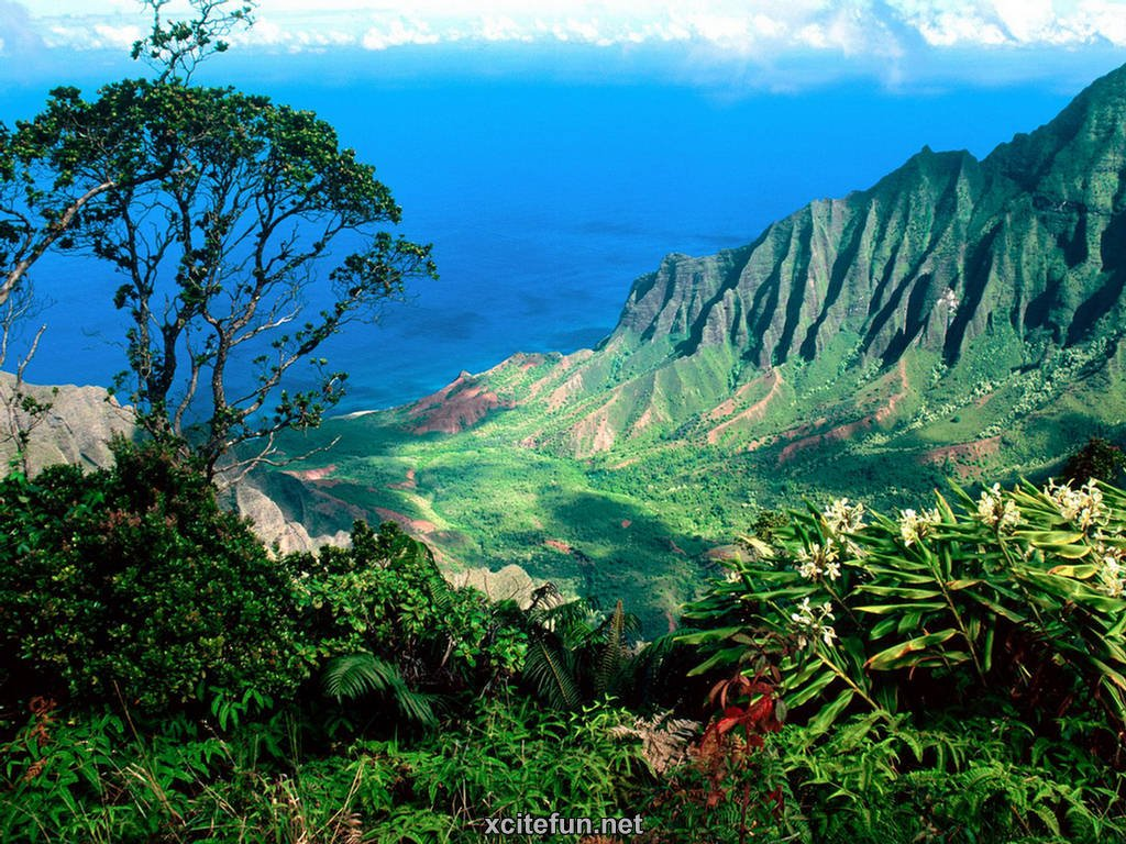 Kauai Hawaii Pictures Wallpapers Travel Guide   The Garden Isle 1024x768