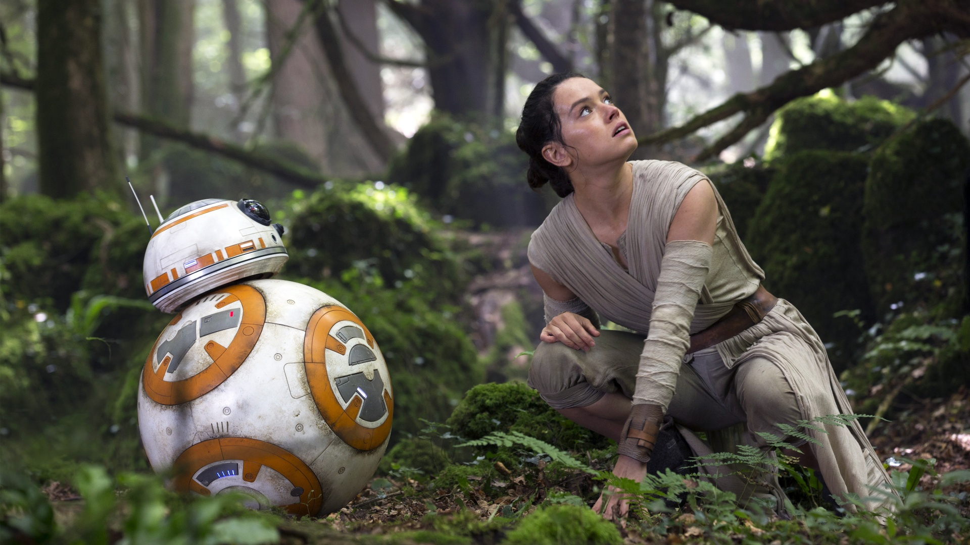 Star Wars The Force Awakens R2 D2 Rey Wallpapers HD Wallpapers 1920x1080