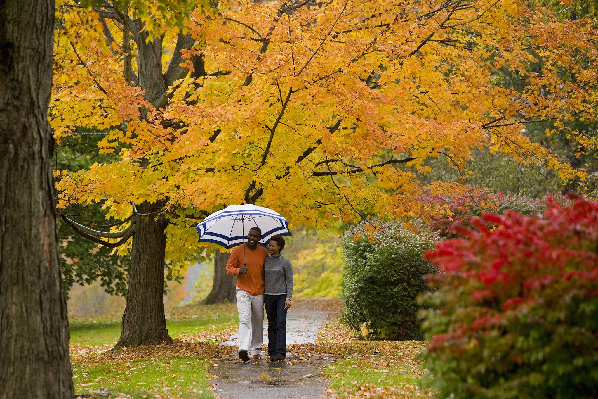 New England Fall Foliage Wallpaper Wallpapersafari