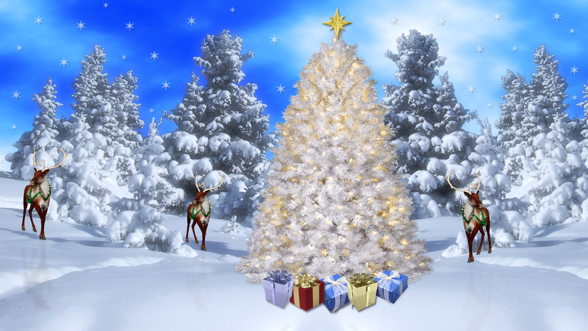 wallpapers screensavers explore christmas white wilderness 1920x1080