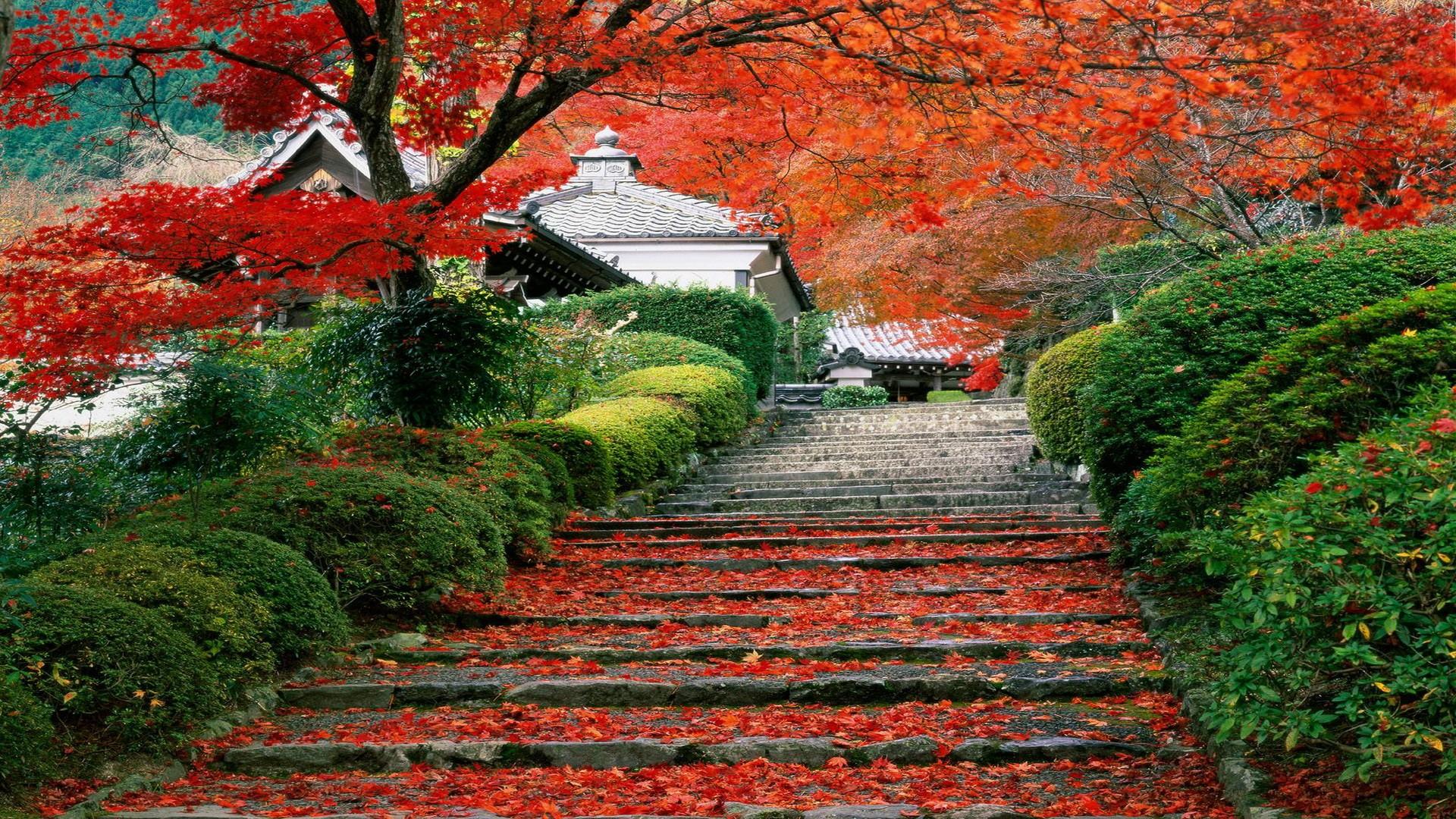 Japan Landscapes Wallpaper 1920x1080 Japan Landscapes Garden Kyoto 1920x1080