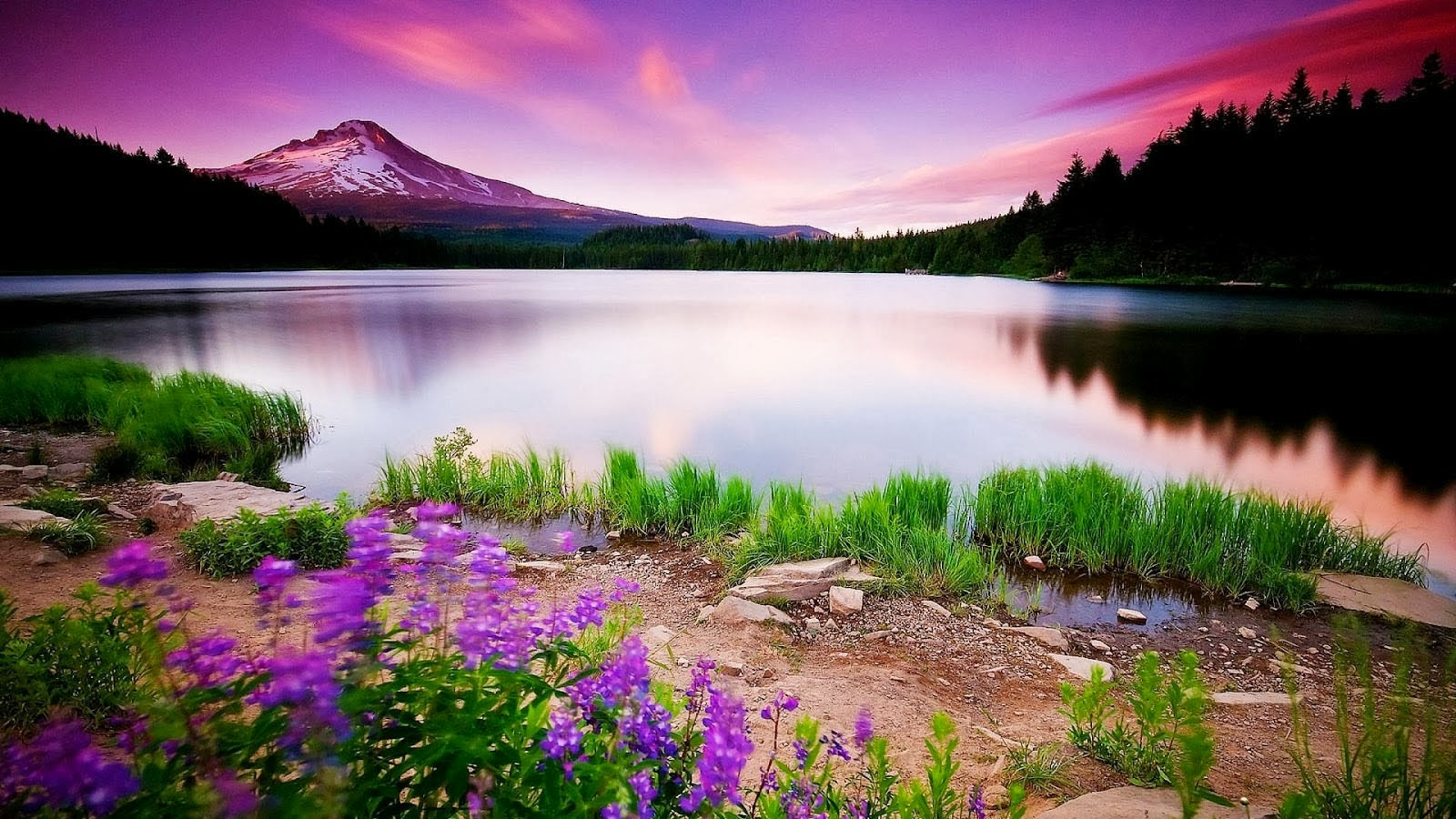HD Size Nature Wallpapers Downloads Full HD Nature Wallpapers 1600x900