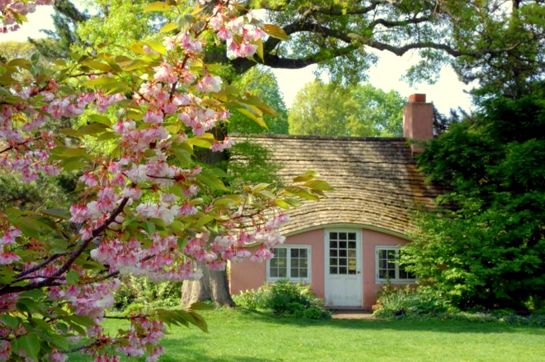 Beautiful Cherry Cottage Wallpaper Widescreen Full HD 1805x1199