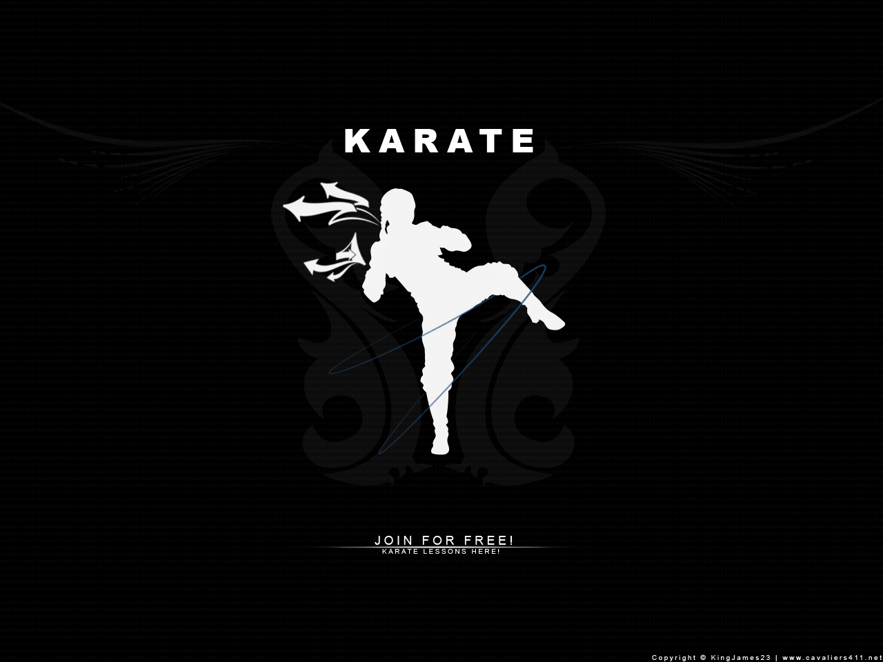 Free Download Karate Wallpapers 1280x960 For Your Desktop