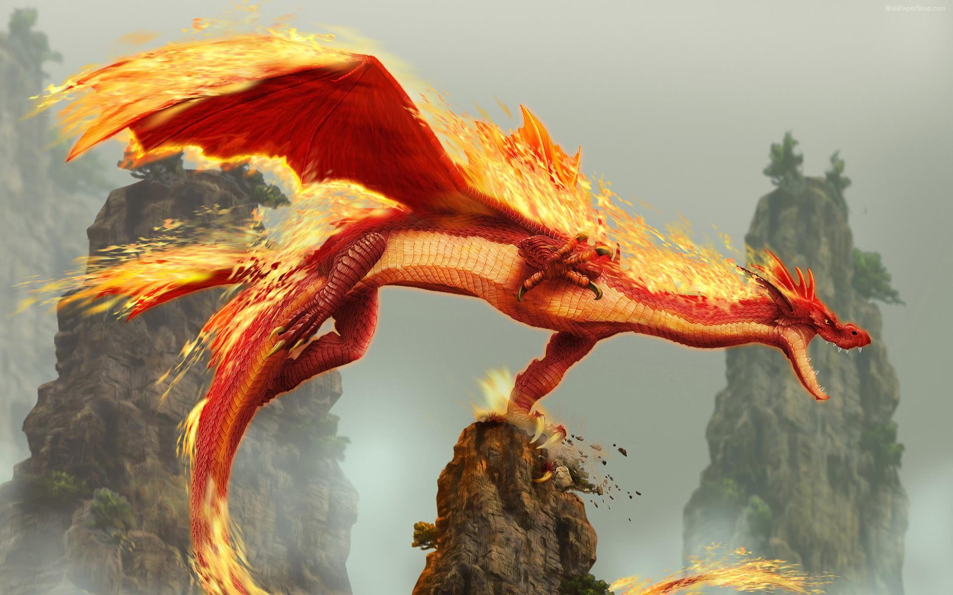 Red Fire Dragon wallpaper   91105 1920x1200