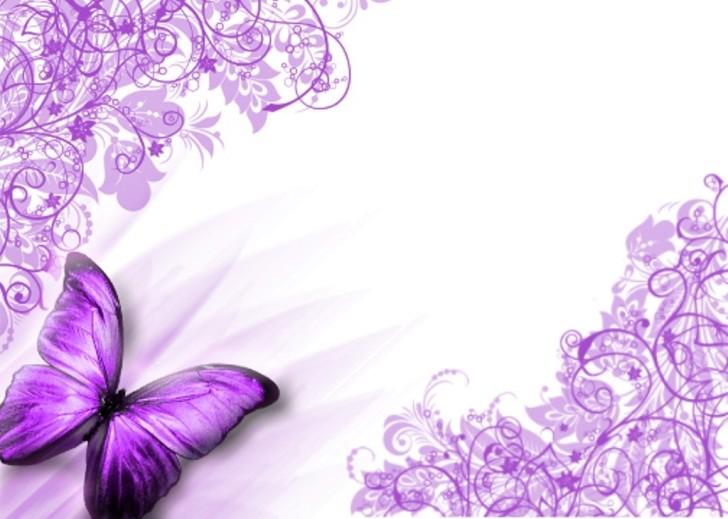 purple butterfly wallpaper   Butterflies Photo 36777360 728x519
