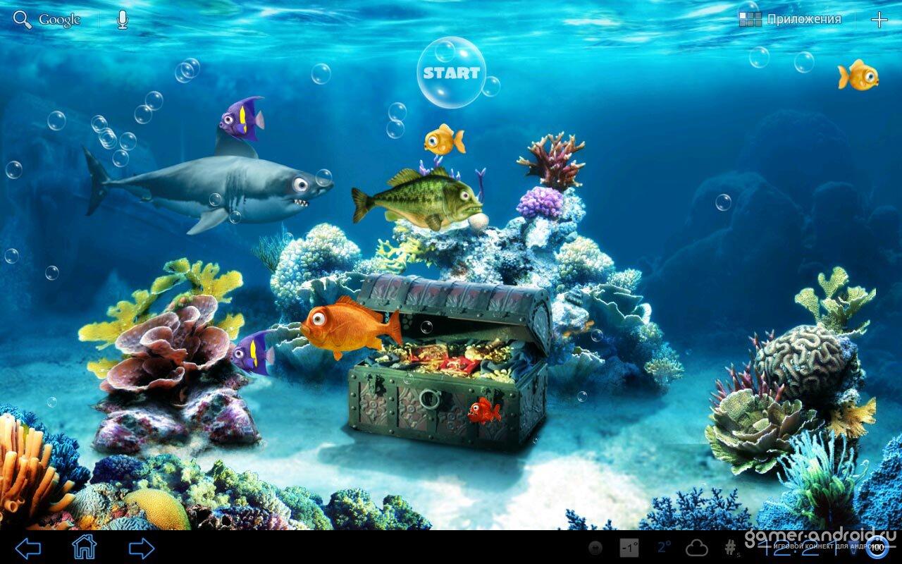 [49+] Live Fish Wallpaper on WallpaperSafari