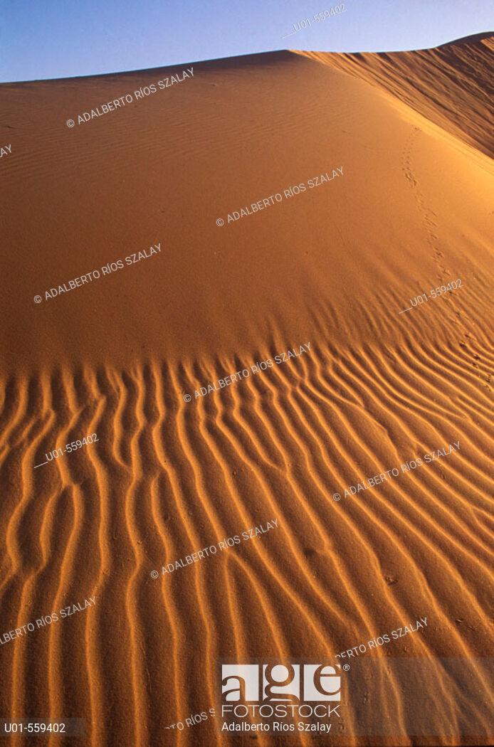 El Pinacate dunes Sierra Blanca in Background Dunas del 694x1050