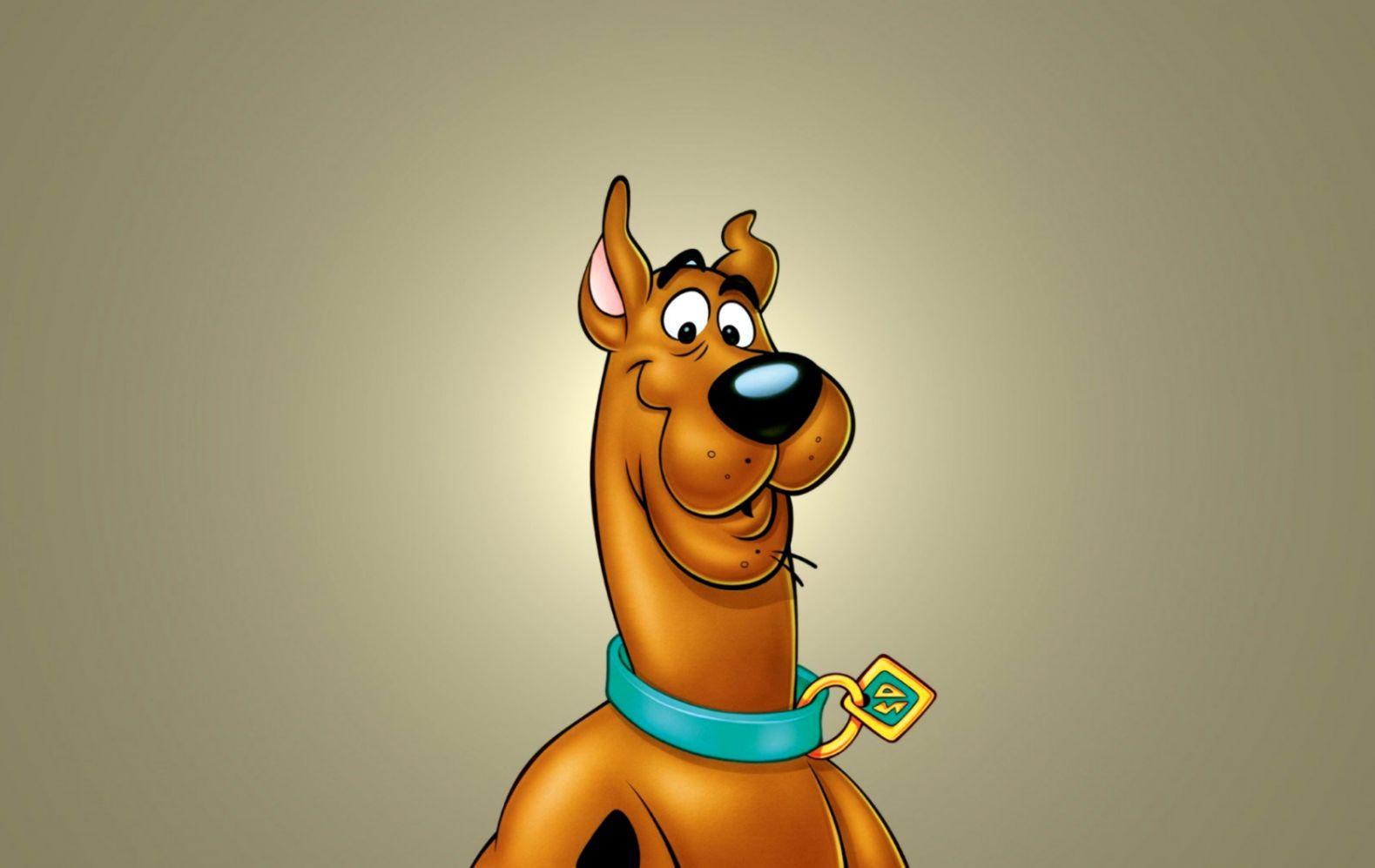 Scooby Doo Dog Drawing Cartoon Hd Wallpaper Wallpapers Photos 1579x997