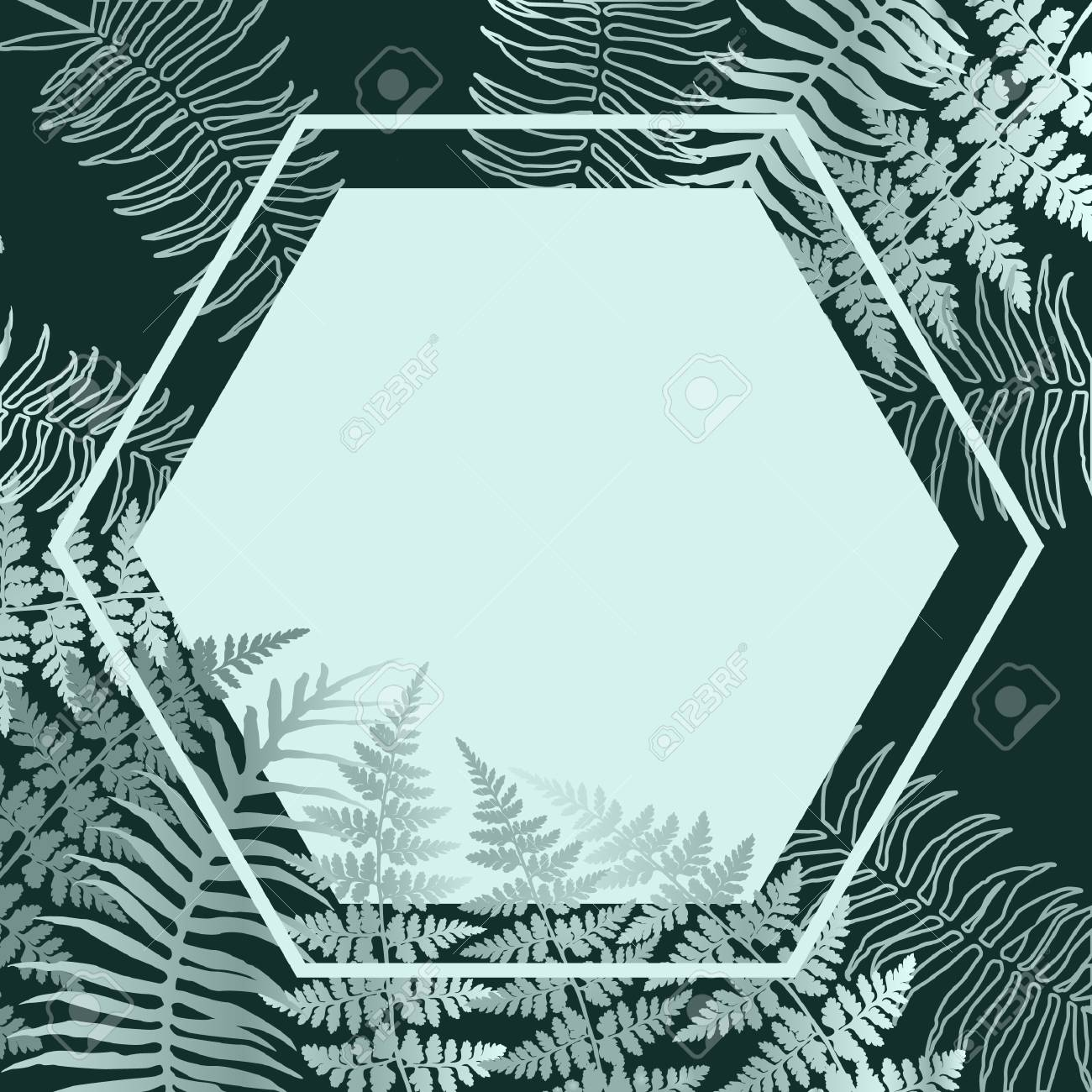 Realistic Silver Fern Frond Twigs Frame Vector Polypodiophyta 1300x1300
