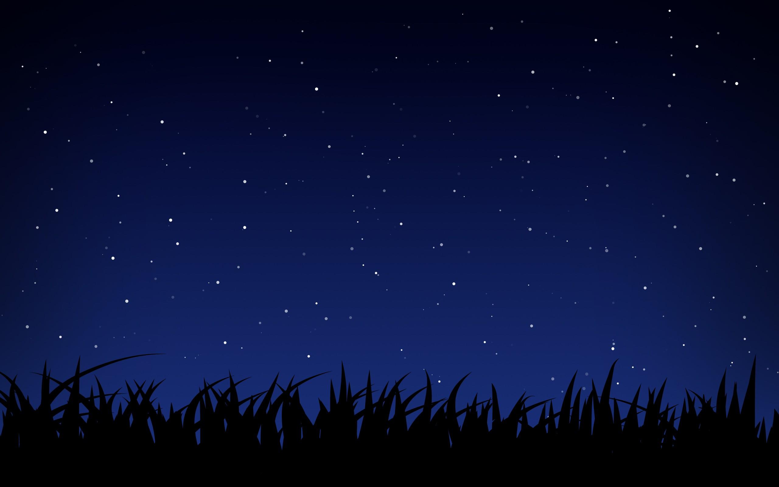 cielo stellato File vettoriale   ForWallpapercom 2560x1600