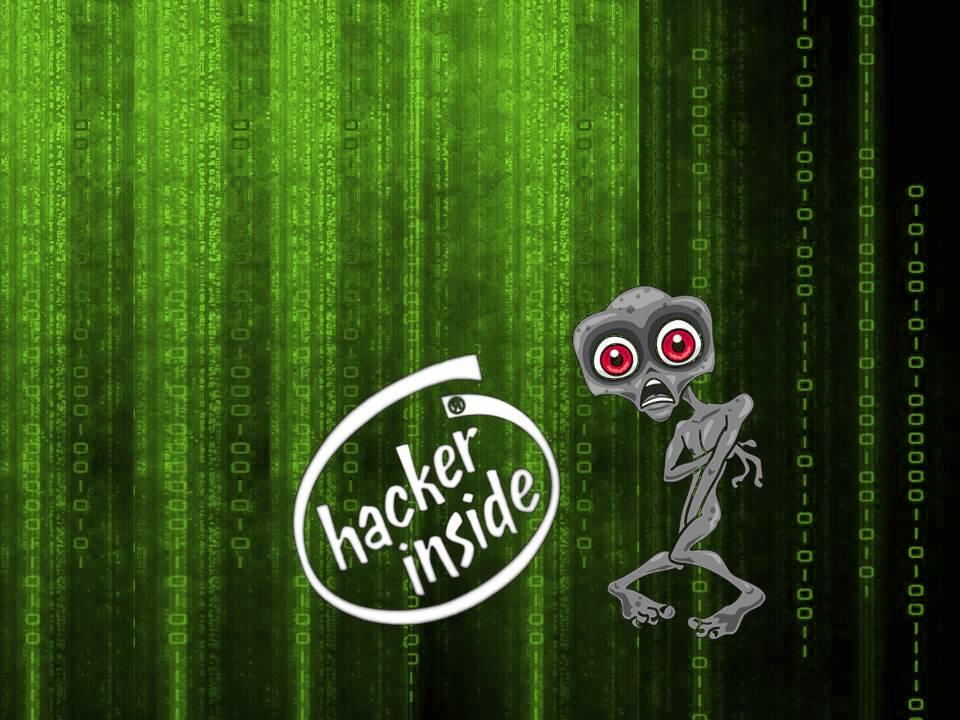 Animated Hacking Wallpaper Hackers wallpaper wallpaper 960x720