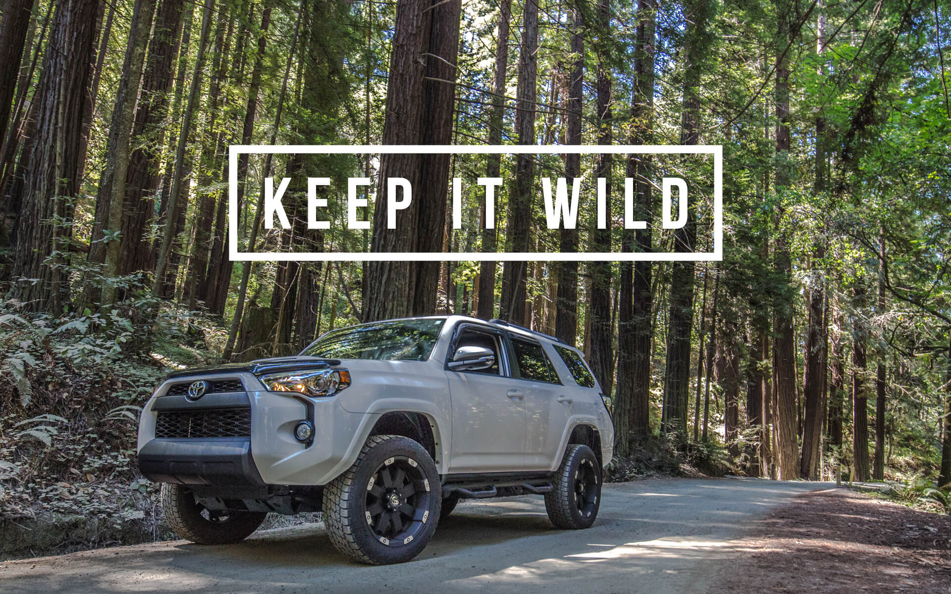 Toyota TRD Wallpapers and Backgrounds iPhone and Desktop 1920x1200