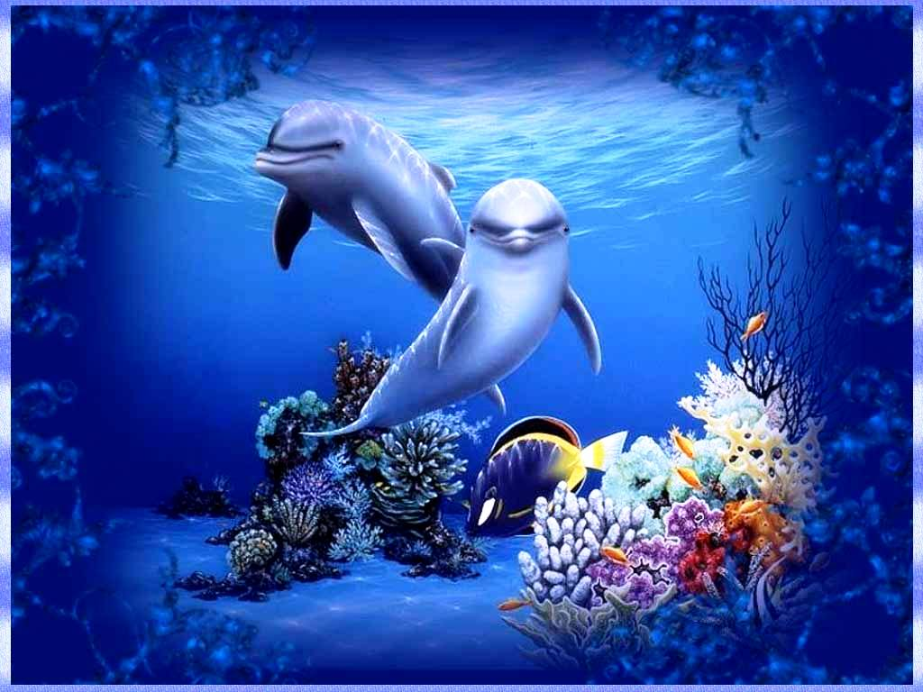 living 3d dolphins animated wallpaper for I Phone   Hot HD Wallpapers 1024x768