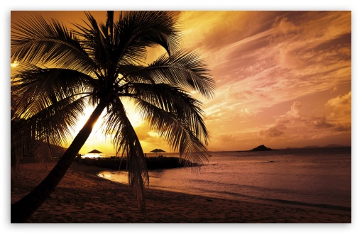 tropical beach pictures sunset tropical beach pictures sunset tropical 510x330