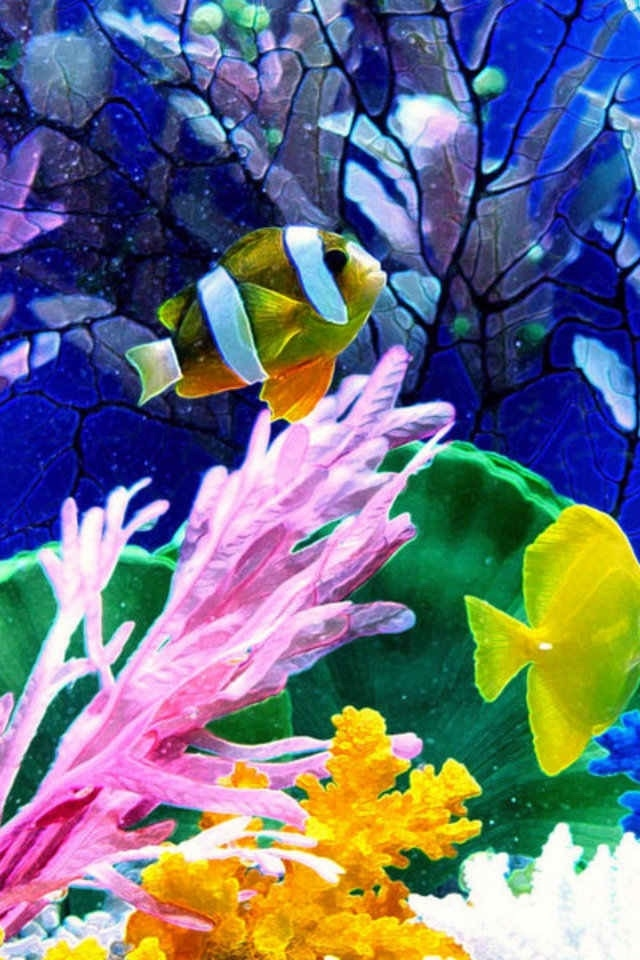 how to cool down water in fish tank