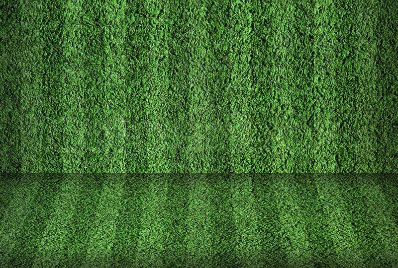 Field Grass Wallpaper Football Field Wallpaper Nfl Football Field 800x540