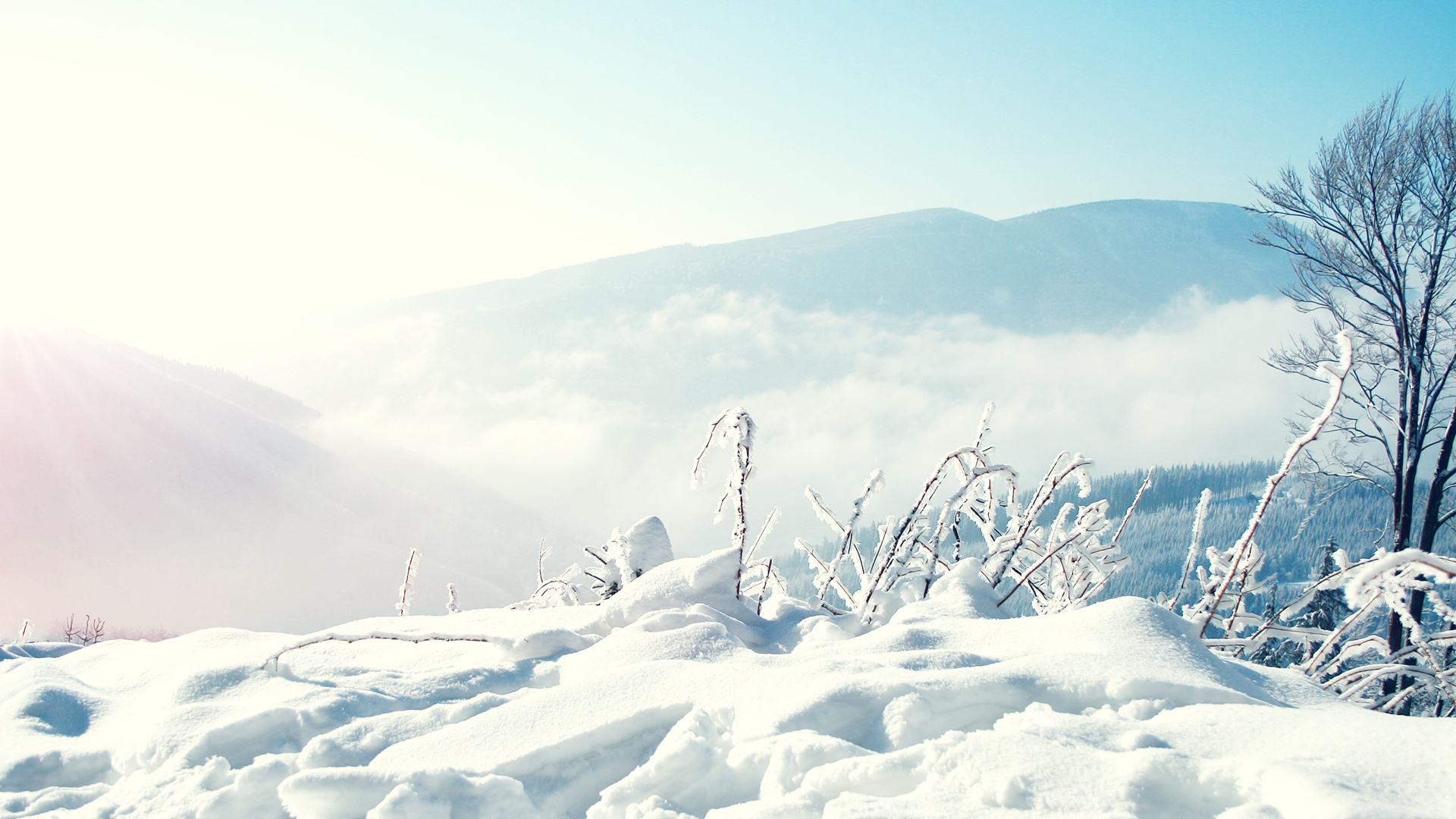 Snow Winter Mountains Wallpapers HD Wallpapers 1920x1080