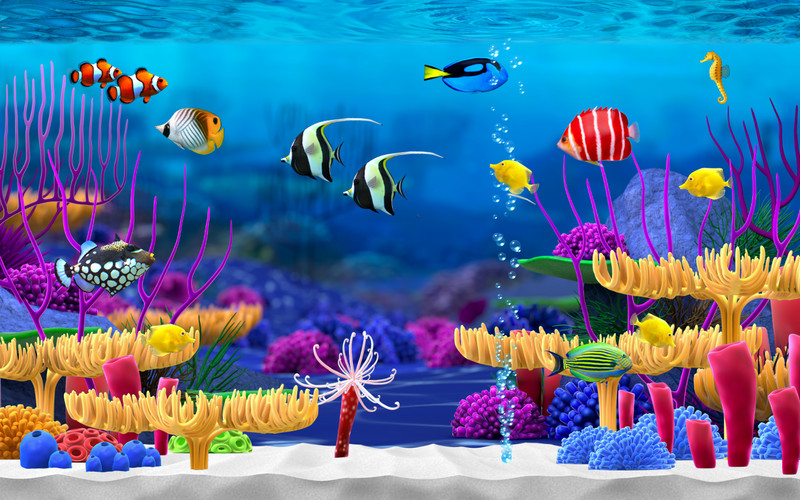 aquarium wallpaper moving windows 10 wallpapersafari