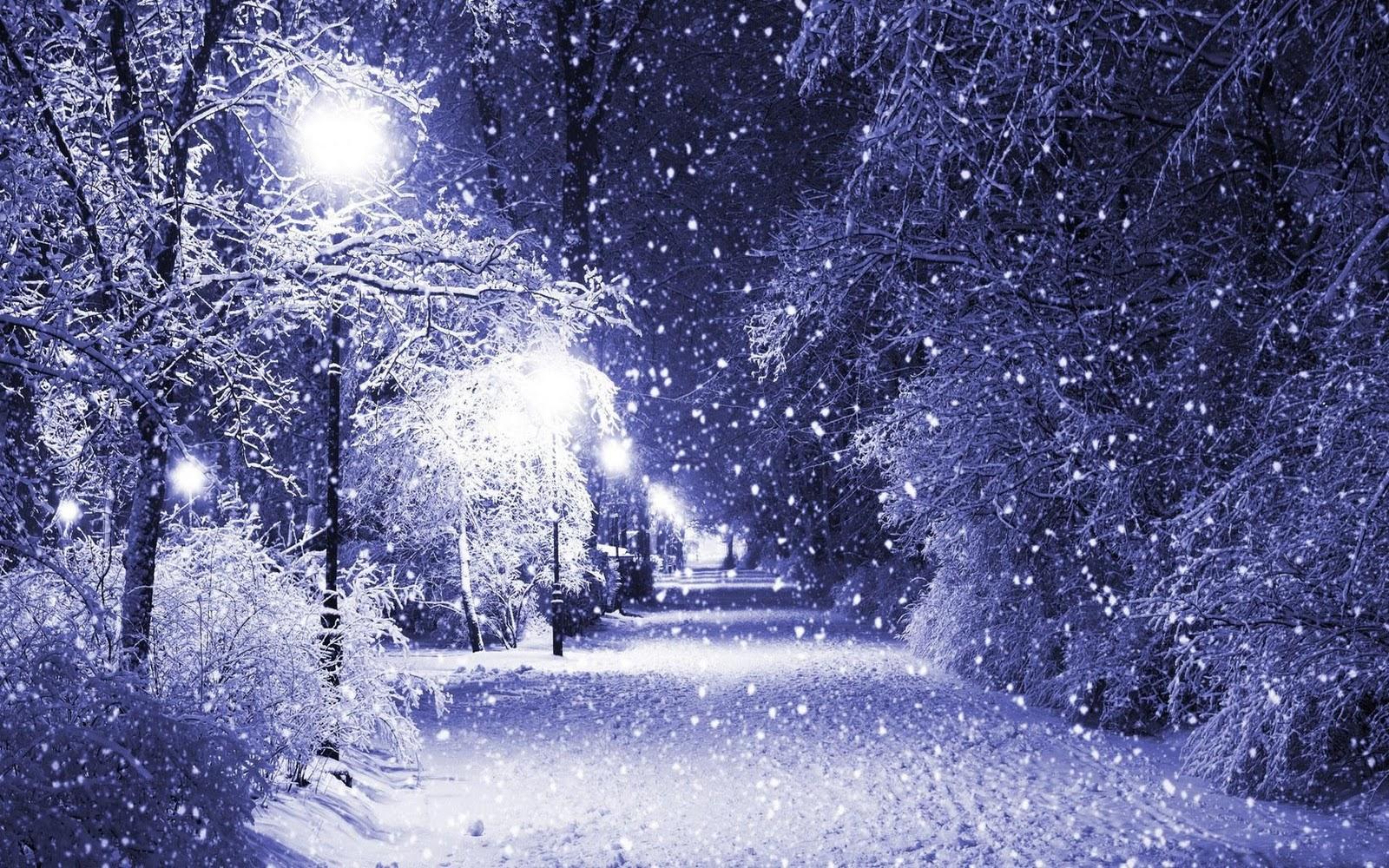 Winters Night Hd Desktop Wallpaper 1600x1000
