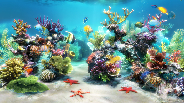 aquarium screensavers 700x393