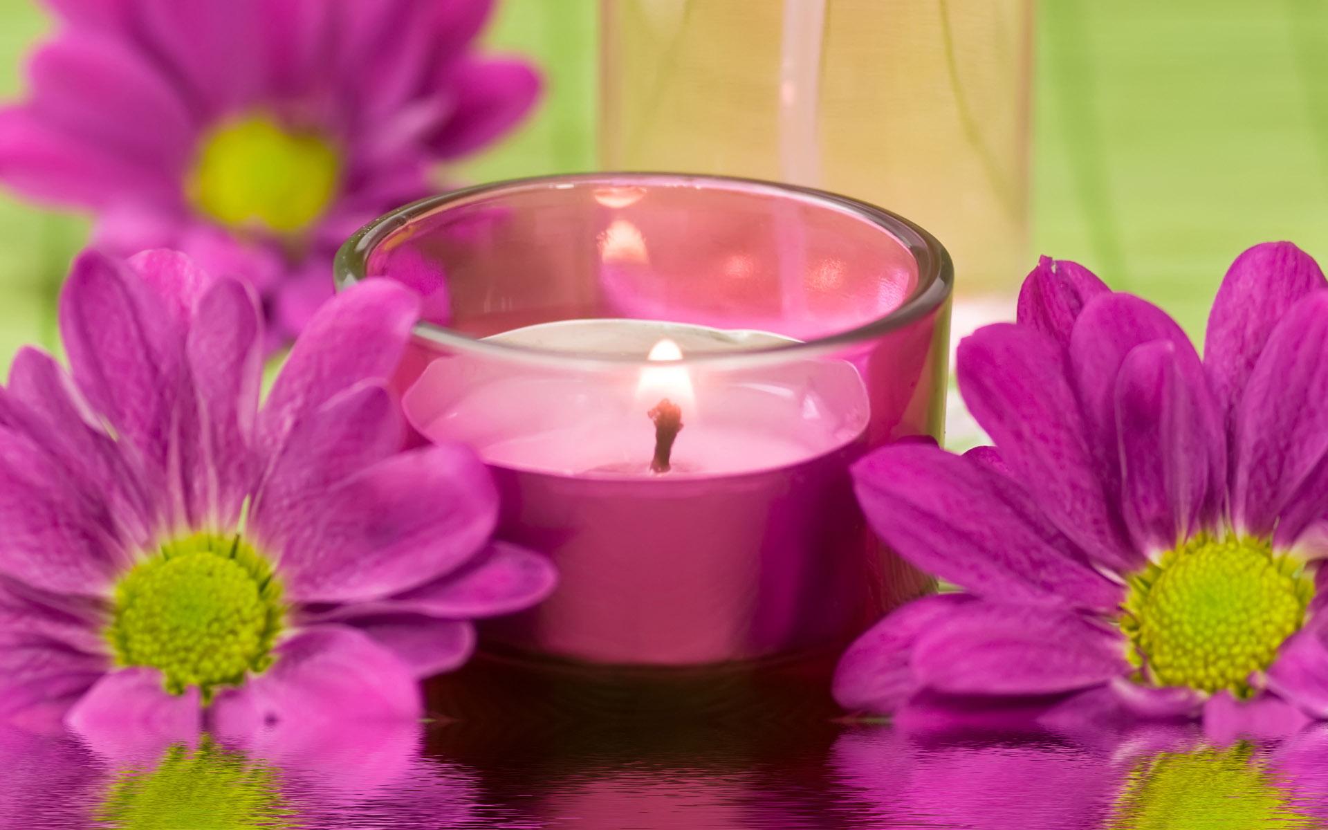цветы свечи  № 1504378  скачать