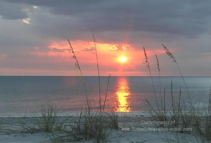 Florida Beaches Wallpaper   Wallpapers And Pictures 702x477