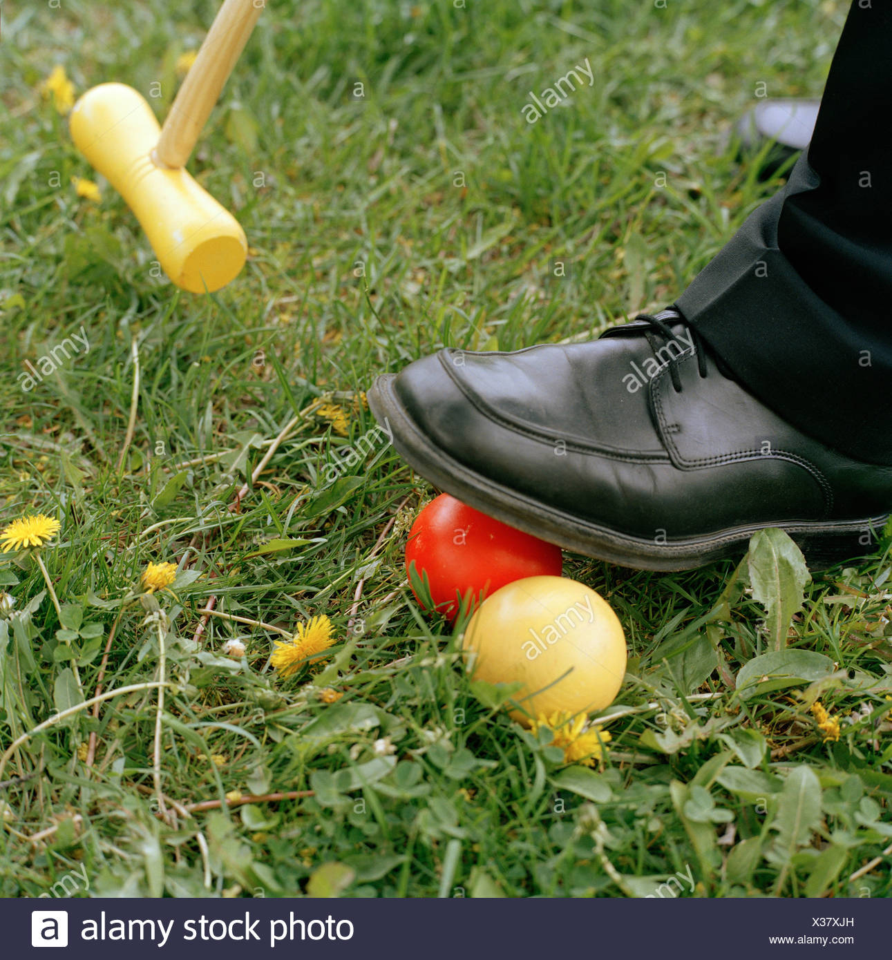 Foot on croquet ball with croquet club in the background Stock 1291x1390