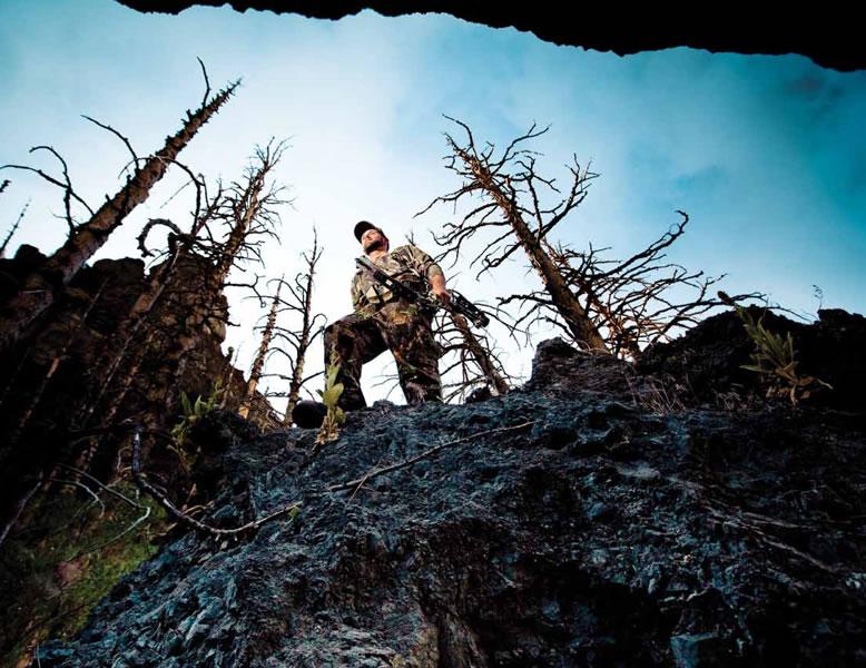 Hoyt archery hunting 778x600