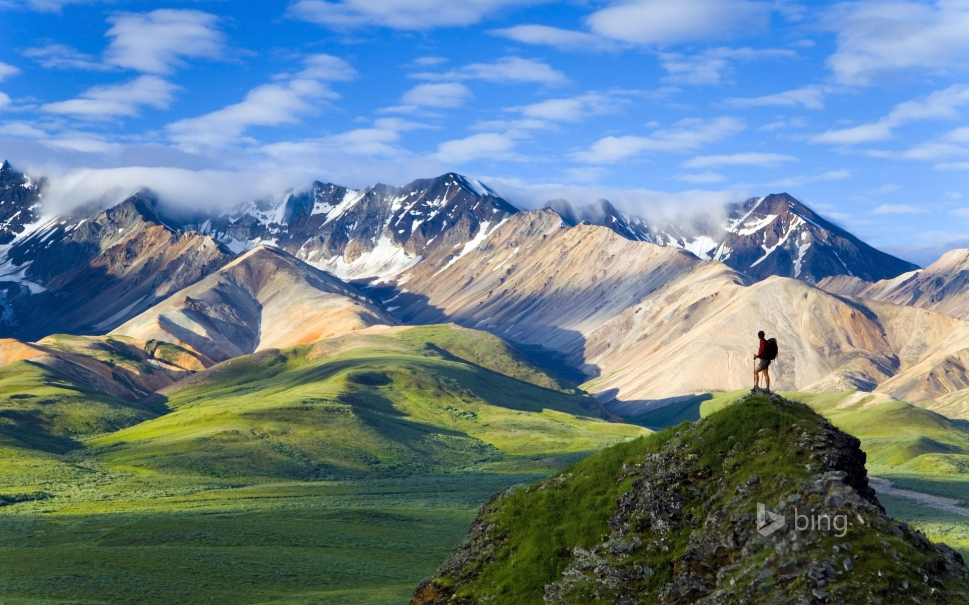 Denali National Park Wallpapers HD Wallpapers 1920x1200