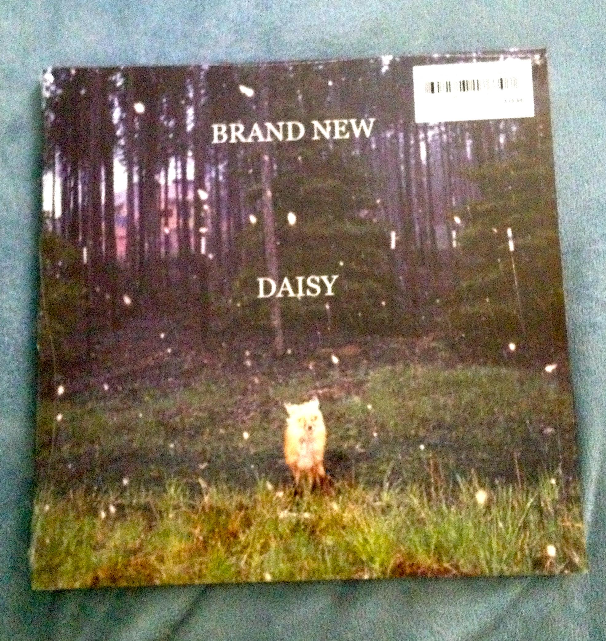 Daisy Brand New Brand new   daisy vinyl 1972x2087